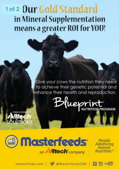Masterfeeds Blueprint Nutrition Program