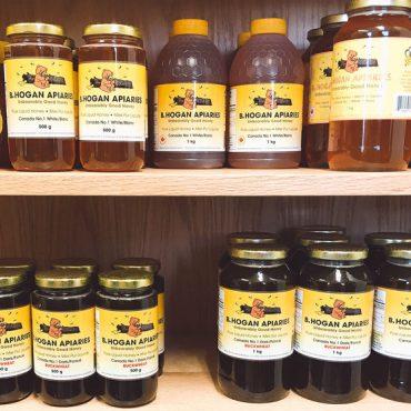 Hogan Honey