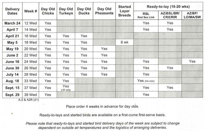 Madoc Frey's 2021 Schedule